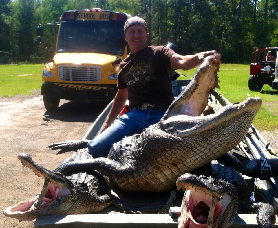 Guided Louisiana Trophy Alligator Hunting At It S Best